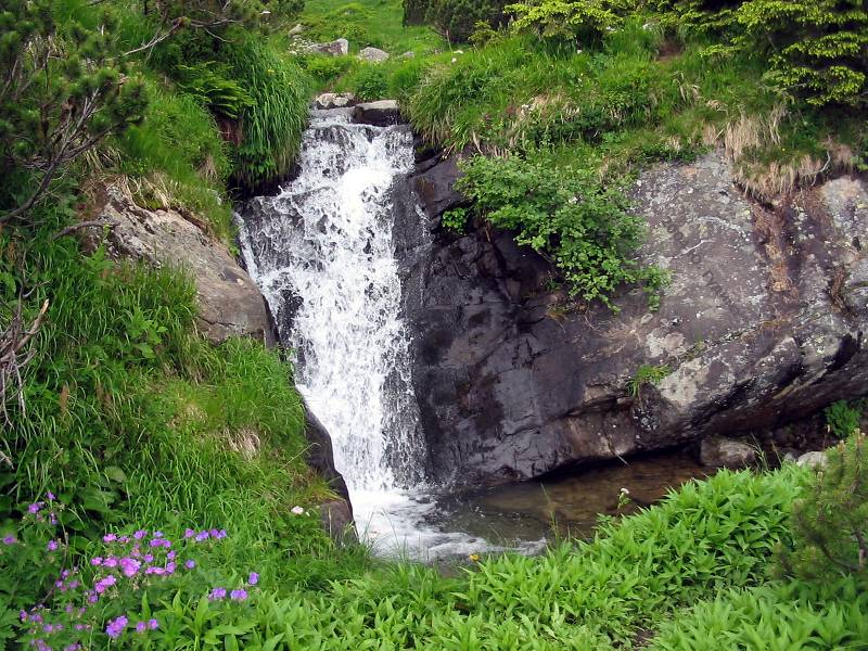 http://www.karpaty.com.ua/pages/gidrography/waterfalls/prut4.jpg