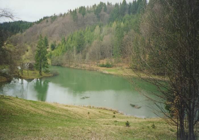 Рибник - гірський ставок поблизу села Верхнє Студене